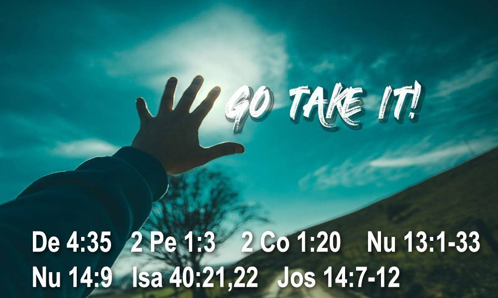 GO TAKE IT! Image