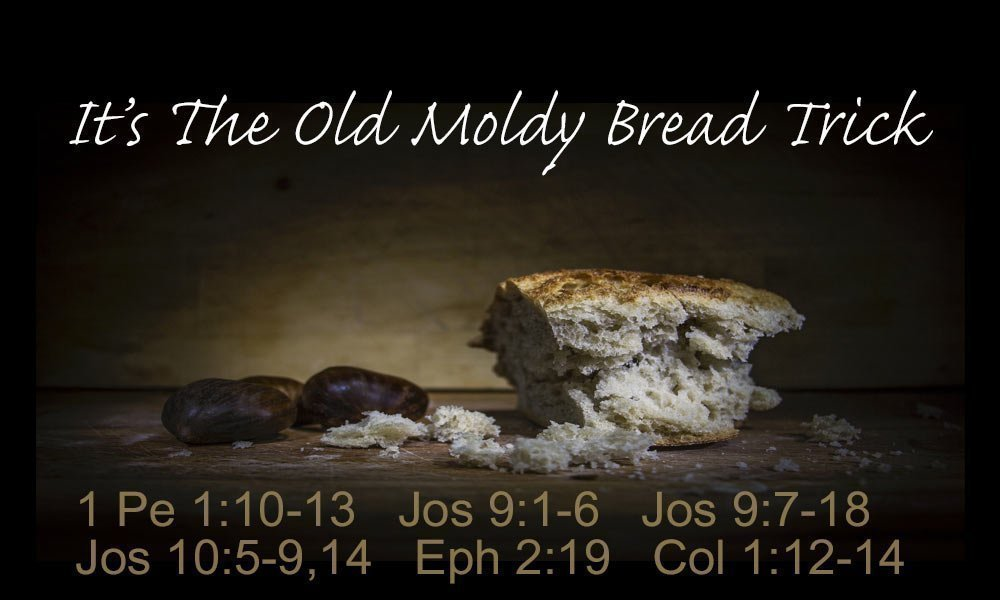 It's The Old Moldy Bread Trick Image