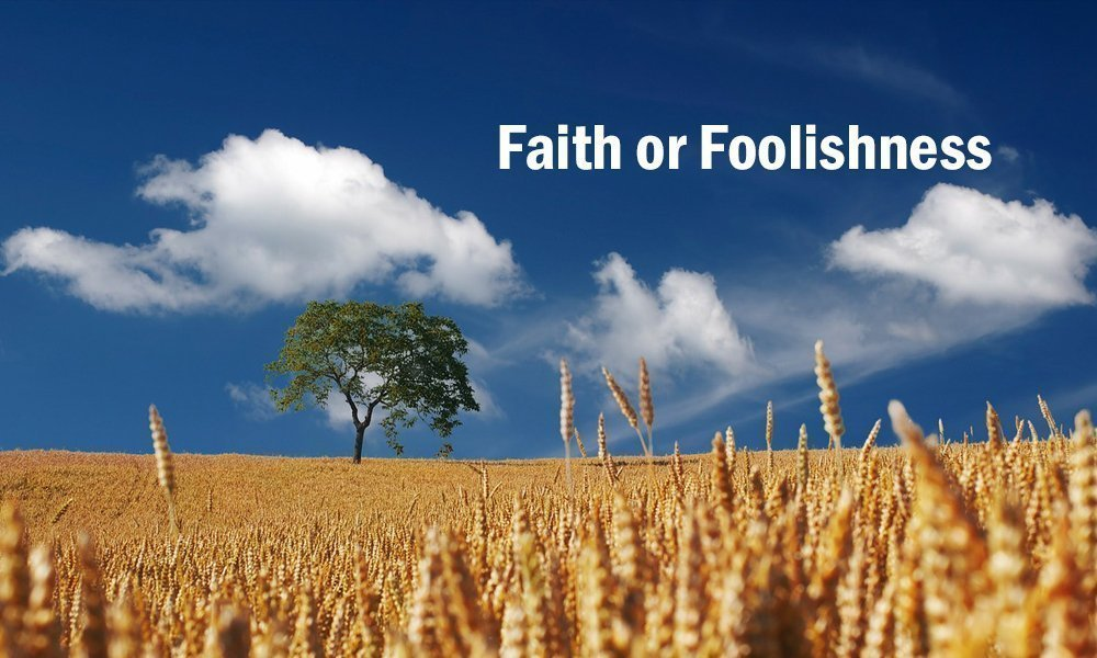 Faith or Foolishness