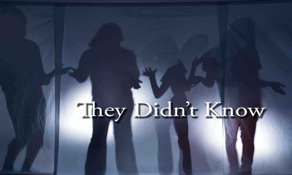 They Didn\'t Know Image