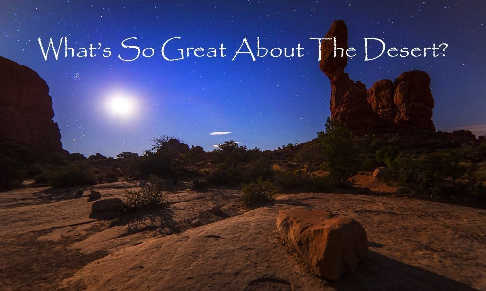 What's So Great About The Desert? Image