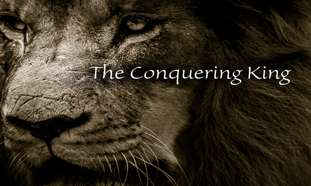The Conquering King Image